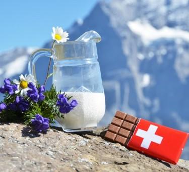Налоги в Швейцарии: конфедерация, кантоны, муниципальные области