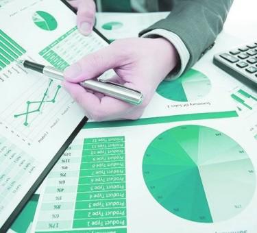 Какие налоги платят ИП в Республике Беларусь: подробная инструкция для начинающего бизнесмена