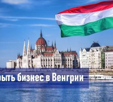 Бизнес в Венгрии: алгоритм открытия фирмы