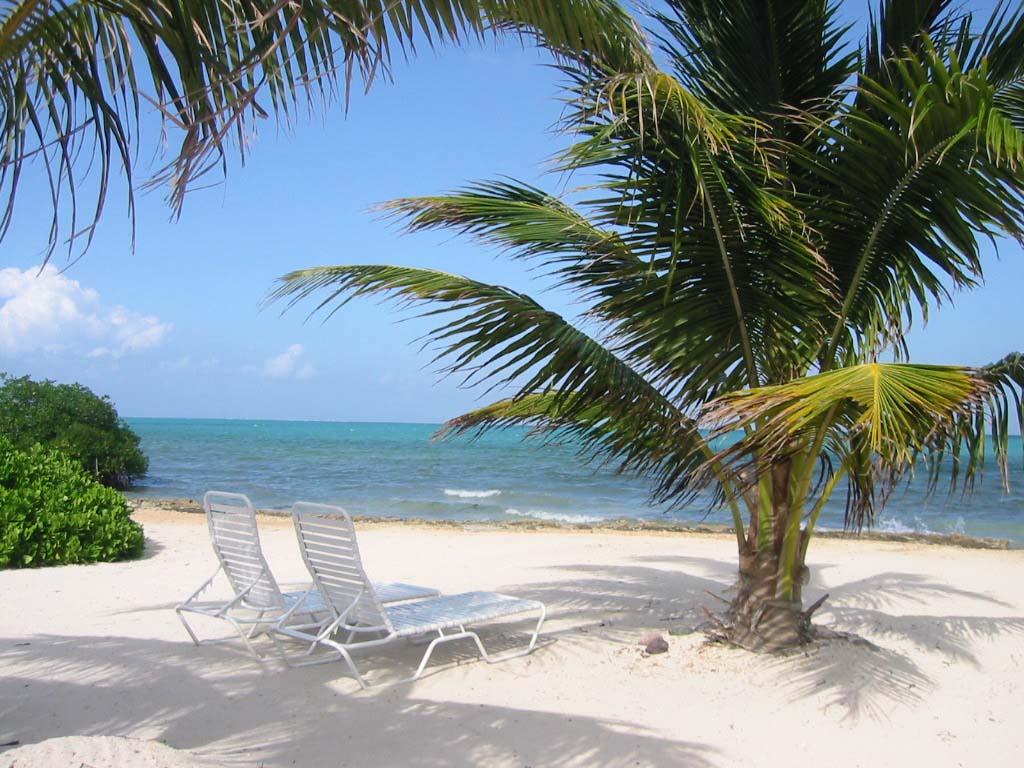 Каймановы острова - совместить приятное с полезным
