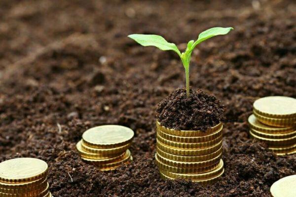 Инвестирование через покупку земельных участков – более рискованное вложение, однако при удачном стечении обстоятельств, вкладчик может получить отличную прибыль