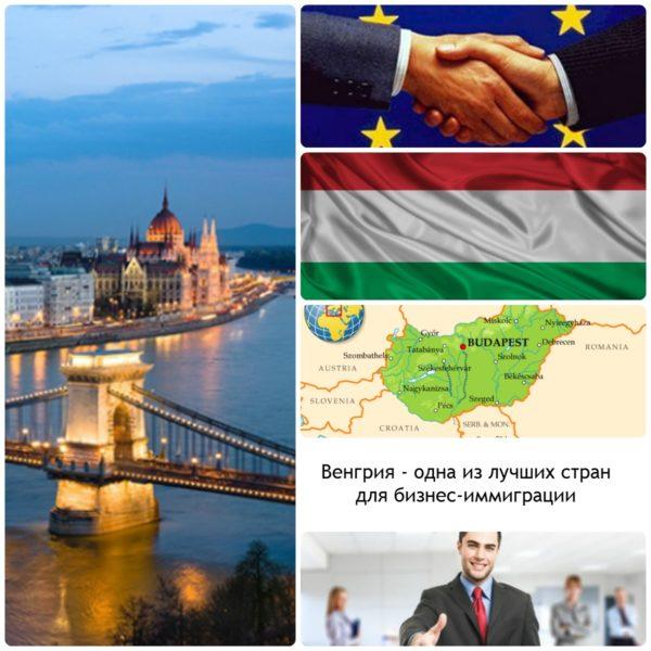 Организационно-правовые формы в Венгрии