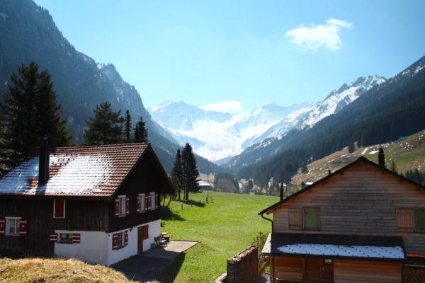 Открытие оффшорной компании в Лихтенштейне для гражданства