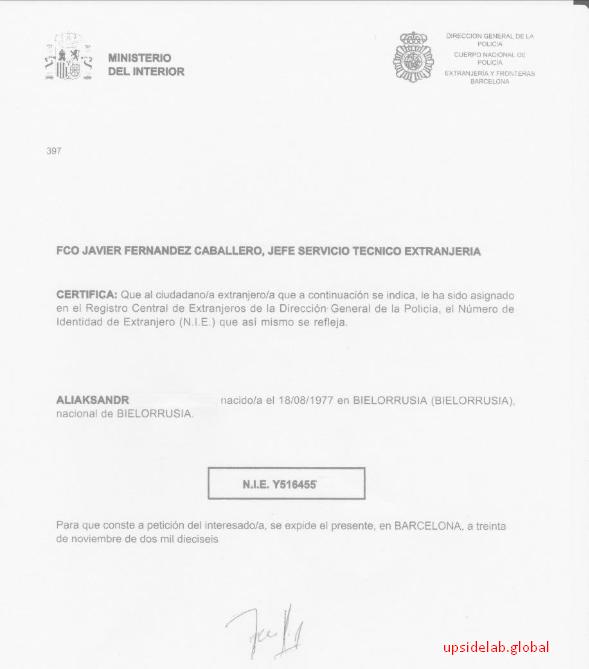 Пример готового идентификационного номера иностранца (NIE)