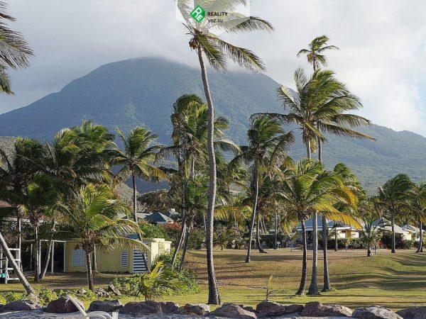 Документы для оформления гражданства в Сент-Китс и Невис