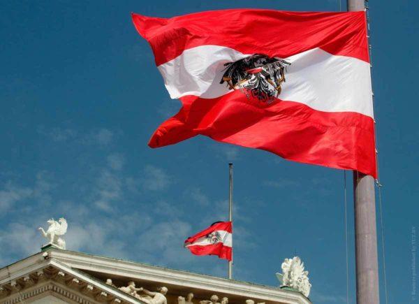 Формы собственности организаций в Австрии