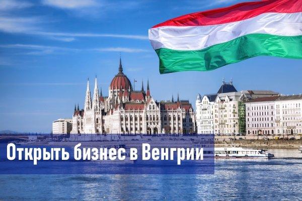 Бизнес в Венгрии