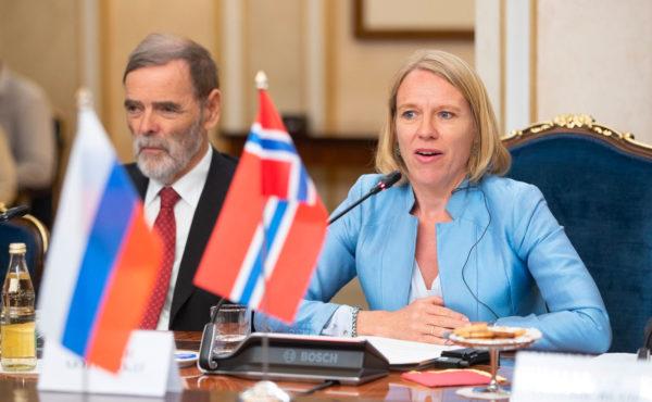 Форма организации бизнеса в Норвегии